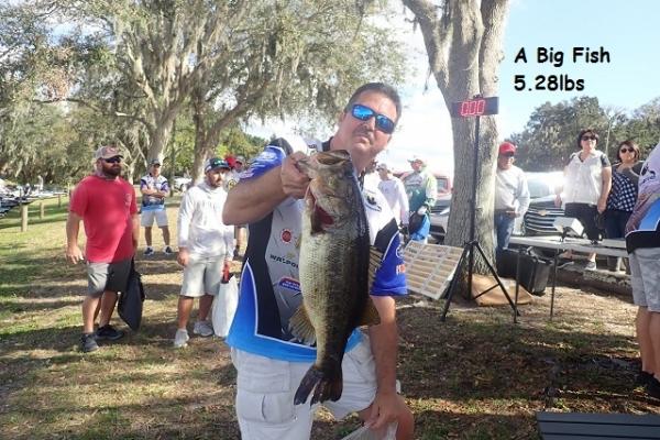 a-big-fish-2A03F207E-2646-A0B4-17A9-69854B640C41.jpg