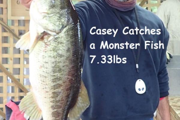 casey-7-33lbs90BB7916-D5E1-C0D4-EE09-3776E115CAED.jpg