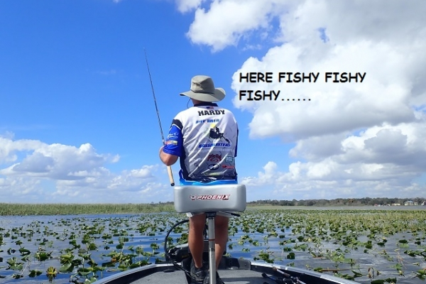here-fishy-fishy-fishy141C7C67-4F71-20B9-A086-1B1E29311884.jpg